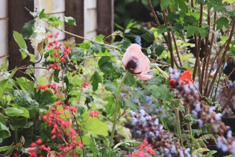 klussen in de tuin