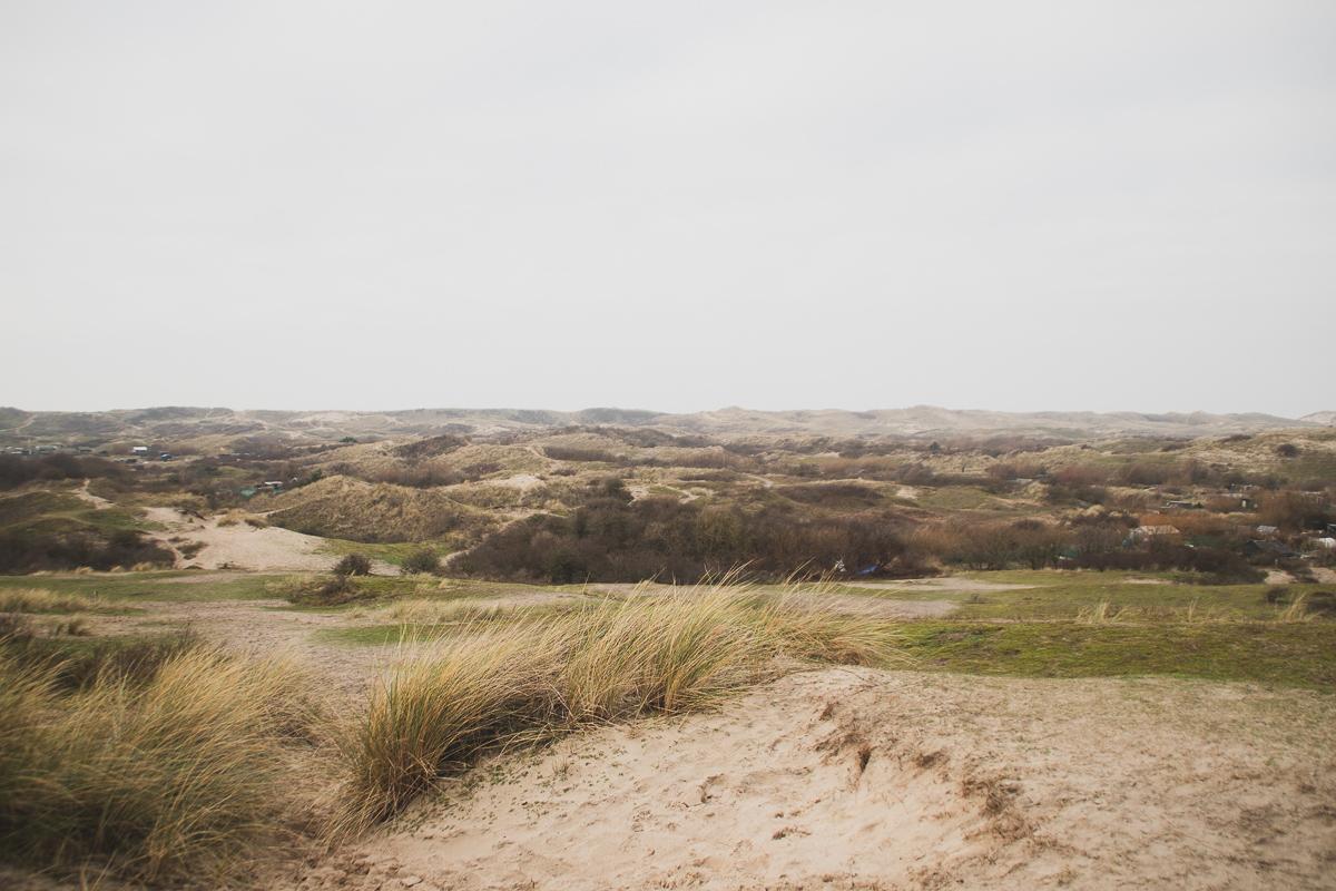 duinen noord holland