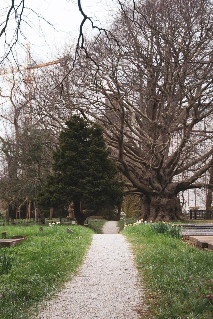 groenesteeg begraafplaats
