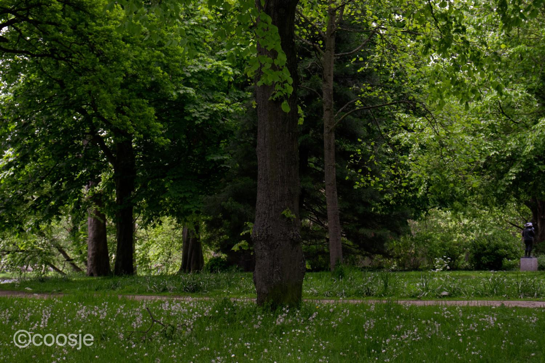 Het Plantsoen Leiden